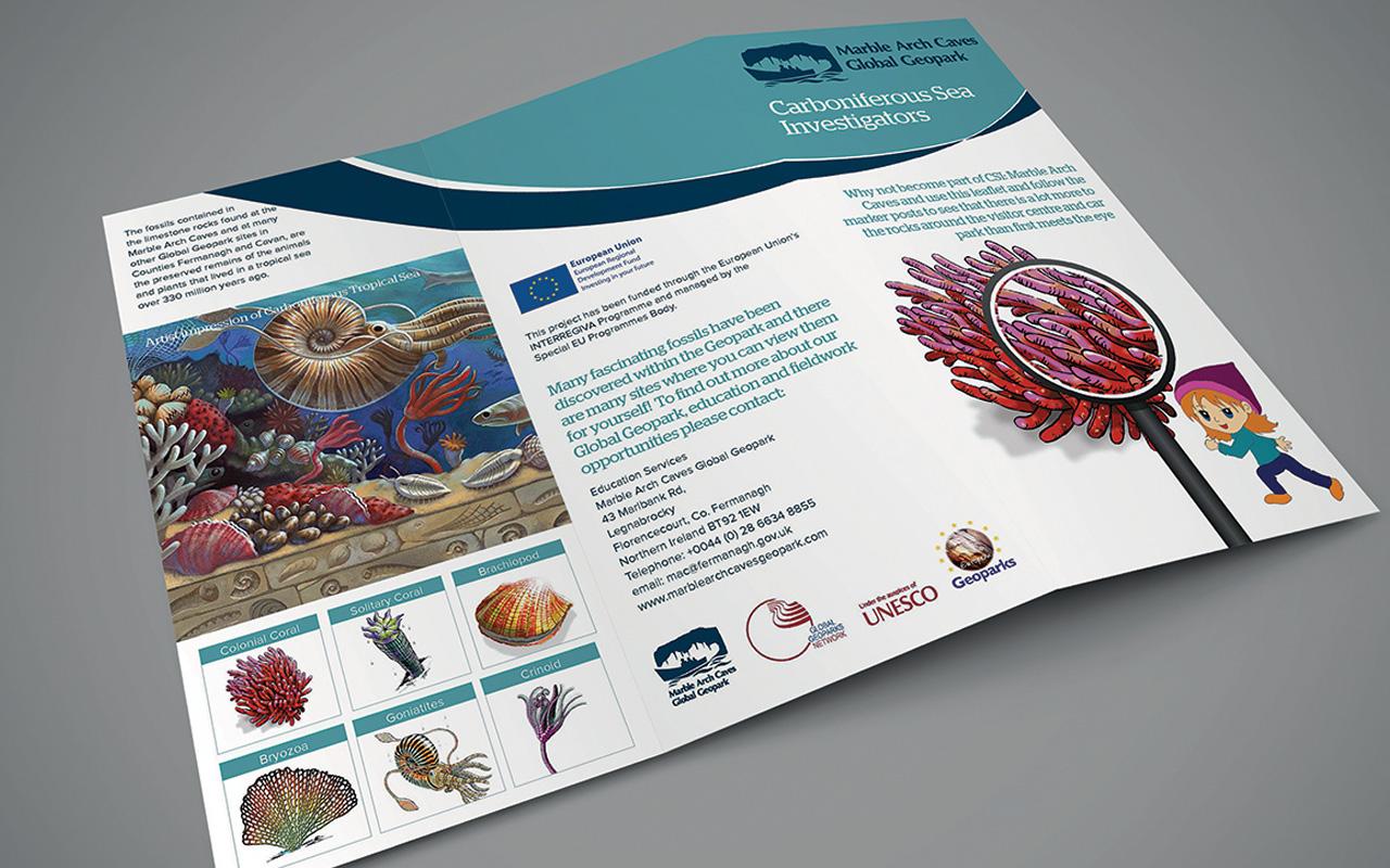 concertina folded leaflet  u2013 eps ltd